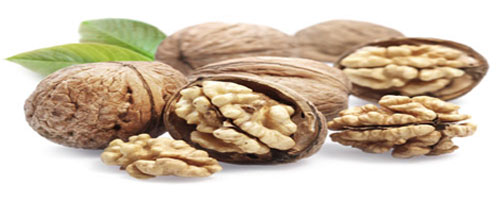 Ramco Exports | Importers & Wholesalers of Dry Fruits, Nuts